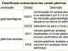 Classificação endoscópica das varizes gástricas