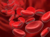 Novos Antiagregantes e Anticoagulantes Orais – Manejo na endoscopia