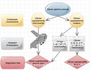 Fluxograma sugerido pelos autores
