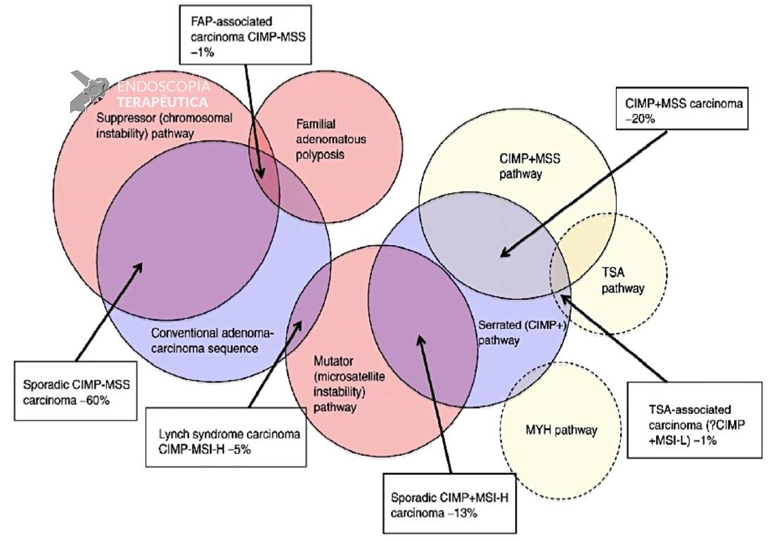 Cancer de colon kras mutado, Tratamiento cancer de colon kras mutado