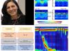 Diagnóstico moderno da DRGE: o Consenso de Lyon – O que o endoscopista precisa saber