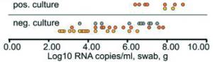 Figura 4 - Sucesso de isolamento viral e carga viral da amostra.