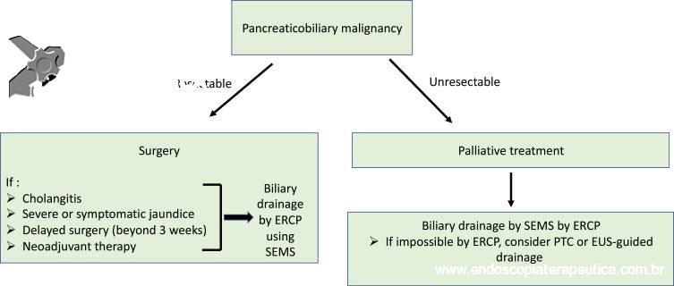 fluxograma da abordagem das obstruções biliares